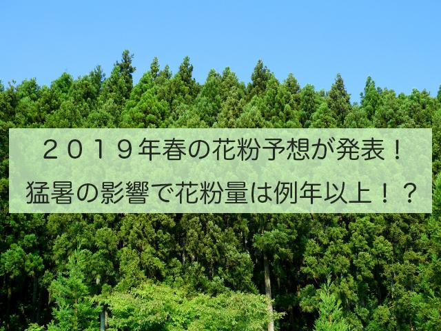 2019年春の花粉予想第1報が発表!花粉量は例年並かやや多め!?