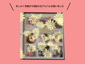 print_square_album_size